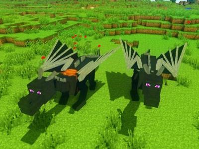 Dragon Mounts Mod image